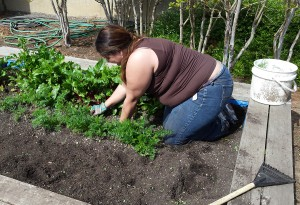 Brianne preps the children's garden for the spring.